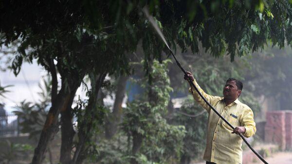 Mężczyzna podlewa drzewa w New Delhi - Sputnik Polska
