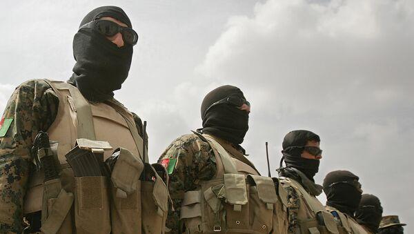 Policja antynarkotykowa Afganistanu - Sputnik Polska