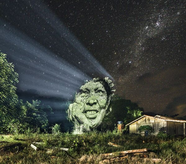 Portret na drzewach w Nizinie Amazonki - Sputnik Polska