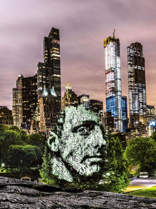 Portret na drzewach w Nowym Jorku - Sputnik Polska