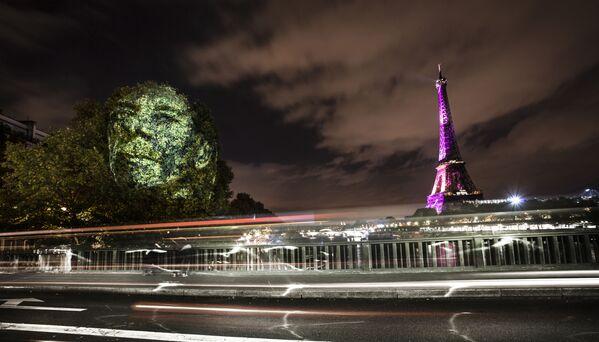Portret na drzewach w Paryżu - Sputnik Polska